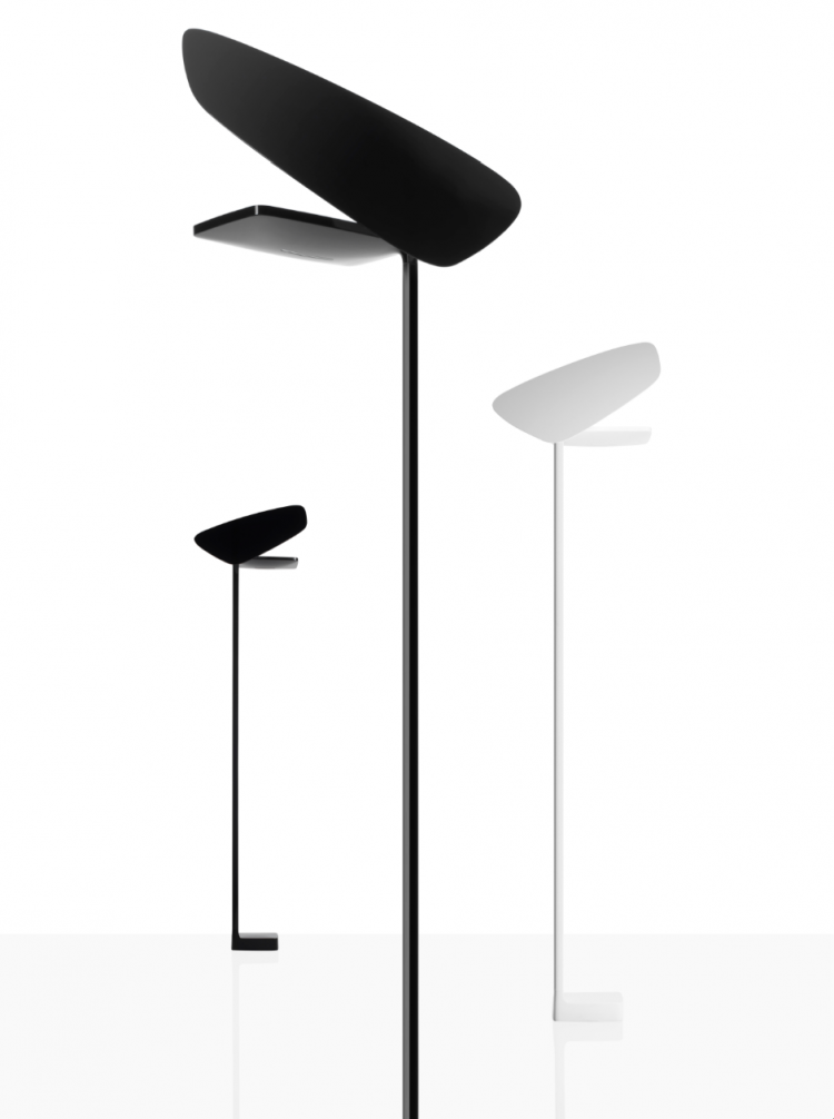 LightwingFoscarini