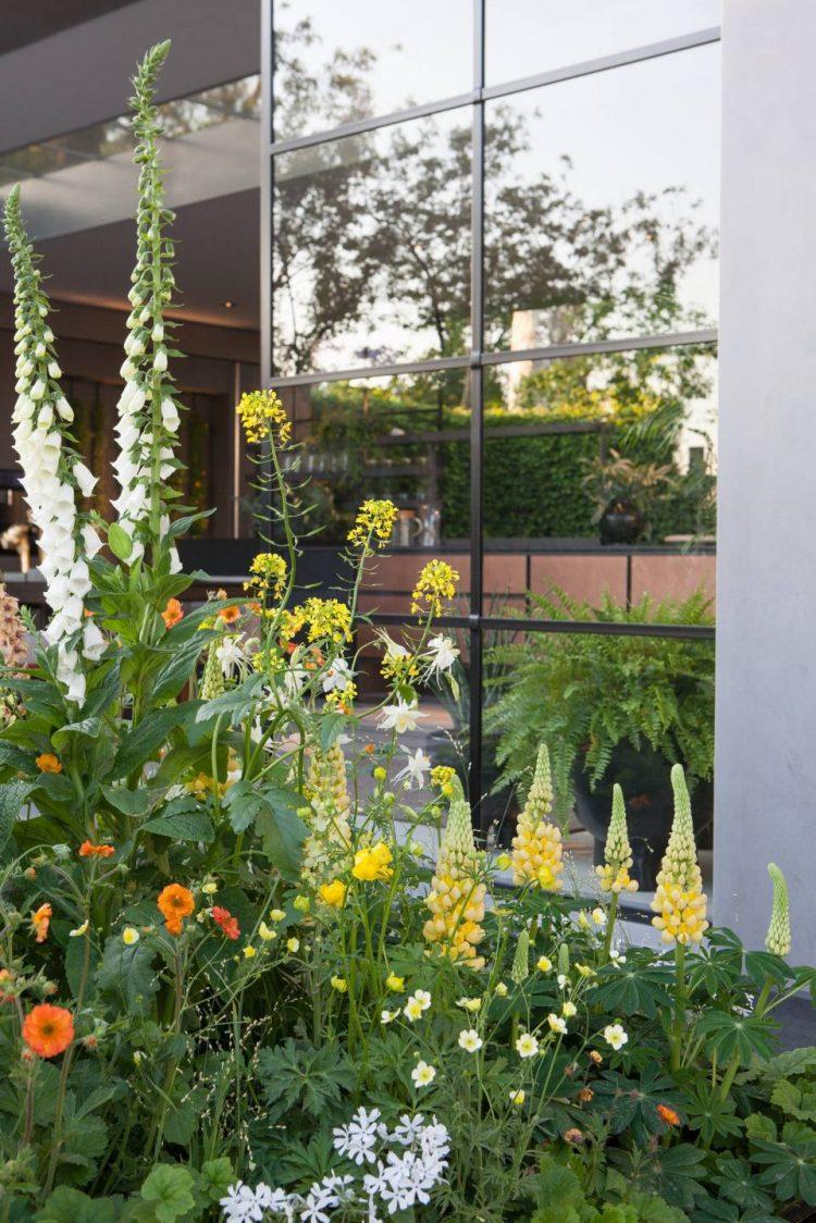 chelsea flower show 2018 reise